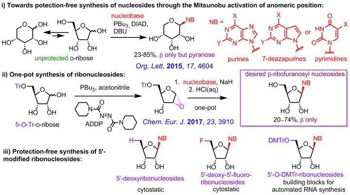 Development of novel methodologies for the synthesis of modified nucleobases and nucleosides